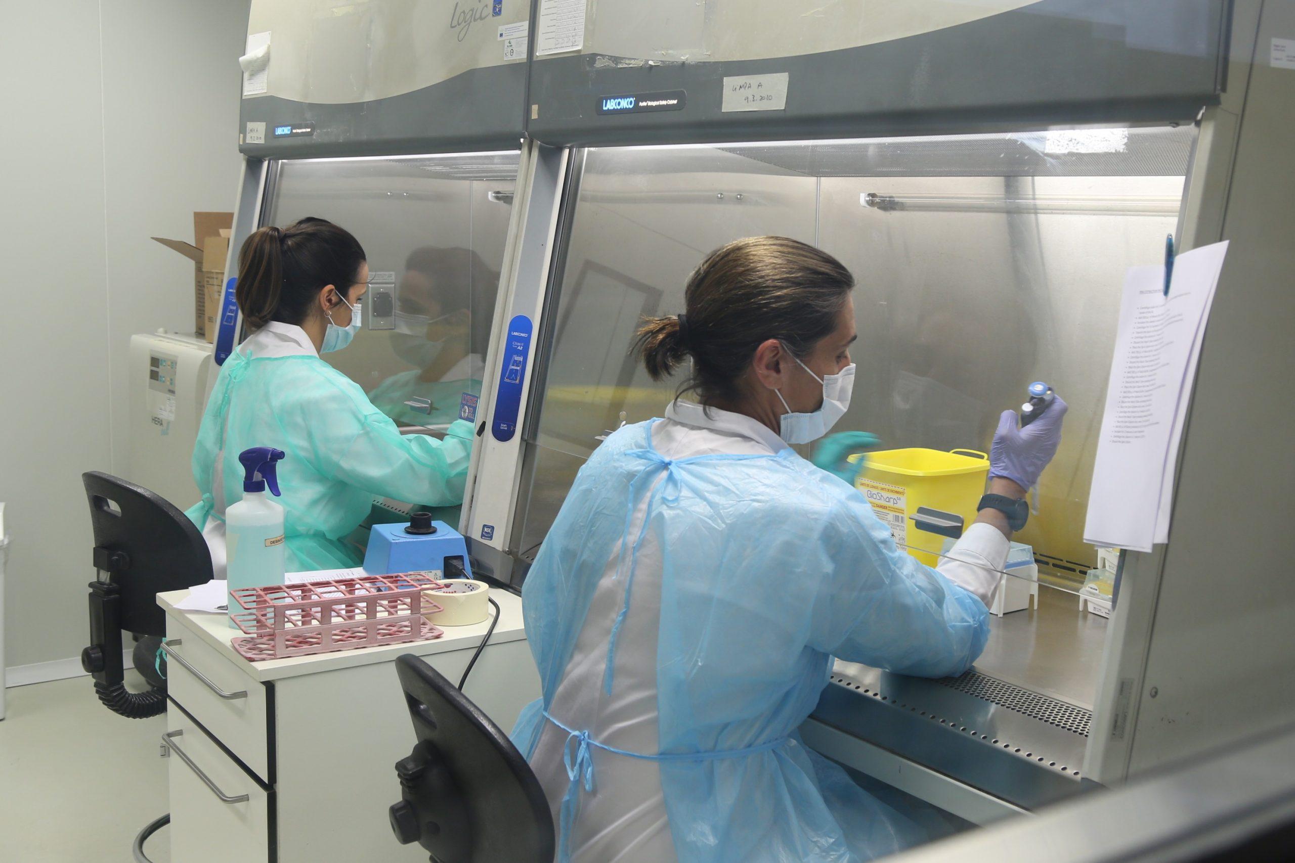 Teste Diagnóstico PCR ao vírus SARS-COV-2